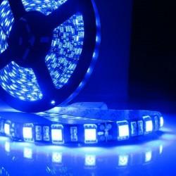 5050 SMD LED Strip, Blue Color,60 LED/M 12V, IP65
